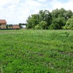 Новые правила изъятия земли для государственных нужд