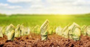 investicii v zemly